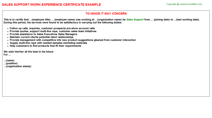 Sales Support Experience Letter Template