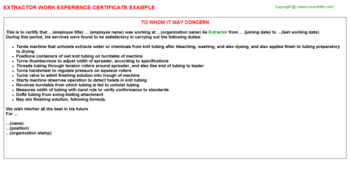 Extractor Experience Letter Template
