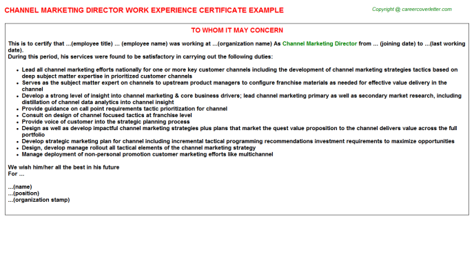 Channel marketing director work experience letter (#25418)