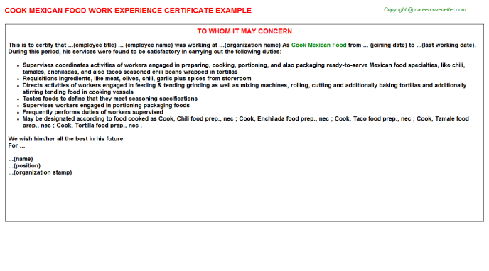 cook mexican food experience letter template