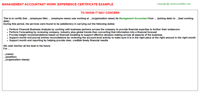 Management Accountant Experience Letter Template