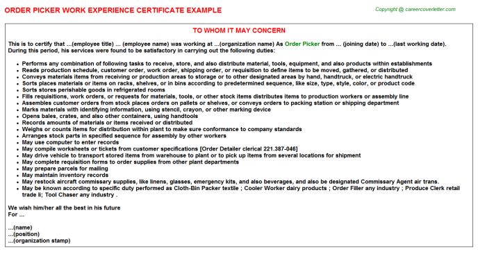 Order Picker Experience Letter Template