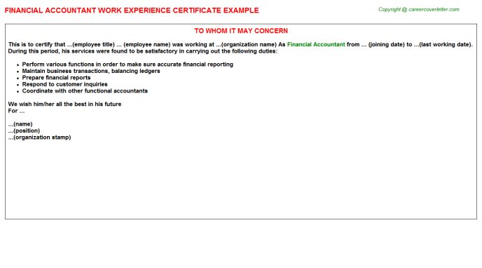 Financial Accountant Work Experience Letter Template