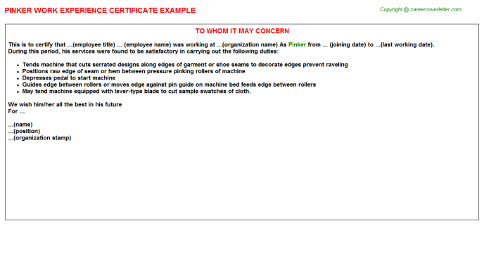 Pinker Experience Certificate Template