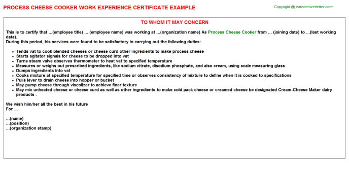 Process Cheese Cooker Experience Letter Template