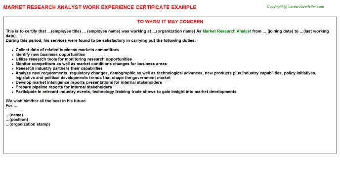 Market Research Analyst Experience Letter Template