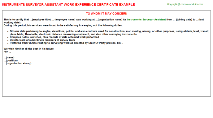 Instruments Surveyor Assistant Work Experience Letter