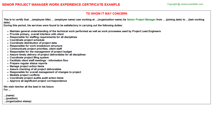Senior Project Manager Experience Letter Template