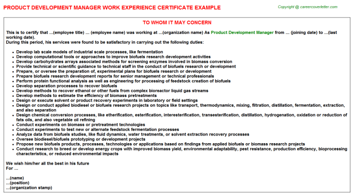 Product Development Manager Experience Letter Template