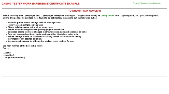 casing tester experience letter template