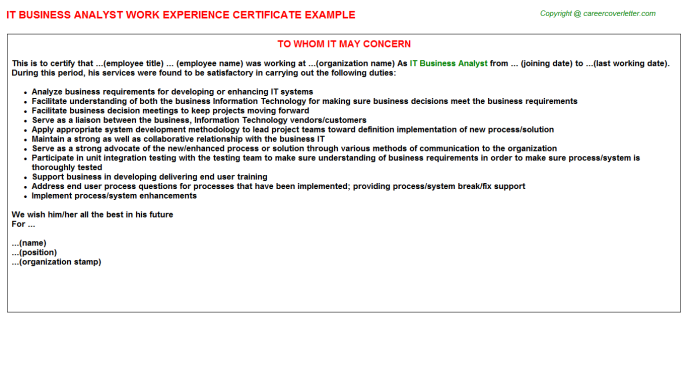 IT Business Analyst Experience Certificate Template