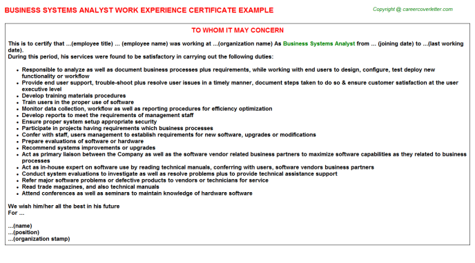 Business Systems Analyst Experience Letter Template