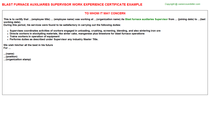 Blast furnace auxiliaries Supervisor Experience Letter Template