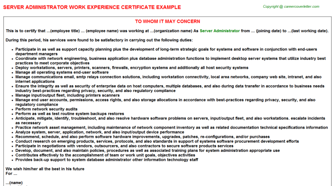 Server Administrator Experience Letter Template