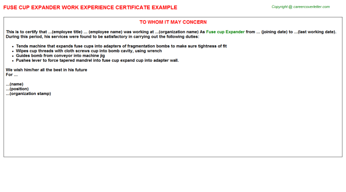 Fuse Cup Expander Experience Letter Template