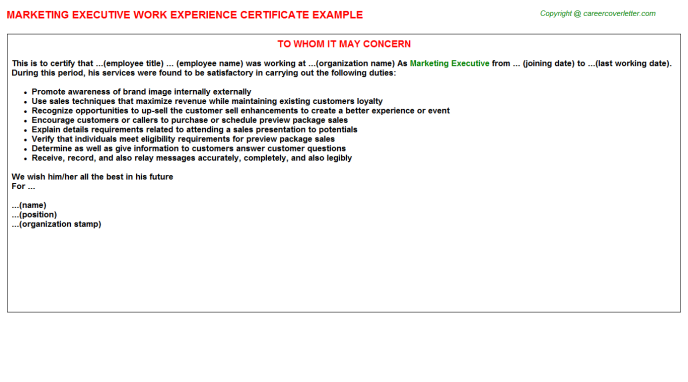Marketing Executive Experience Letter Template