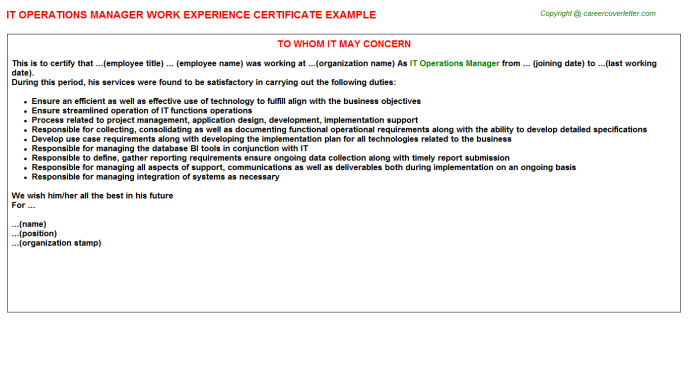 IT Operations Manager Experience Letter Template