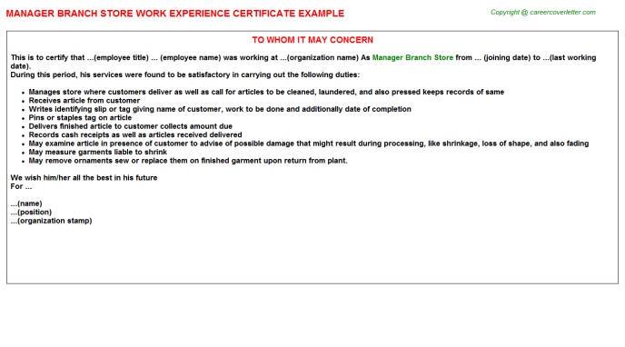 manager branch store experience letter template
