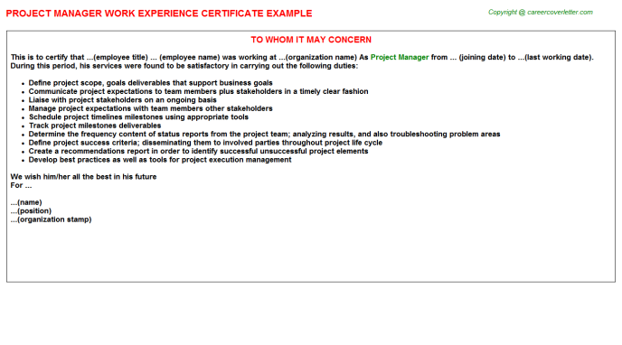 Project Manager Work Experience Letter