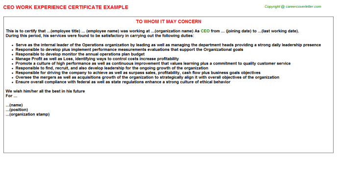 CEO Work Experience Certificate Template