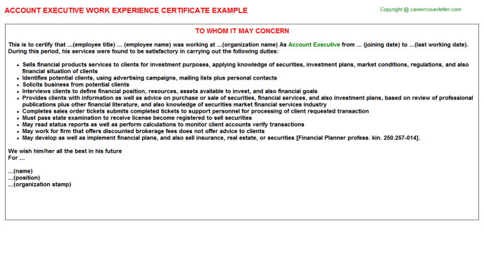 Account Executive Work Experience Letter Template
