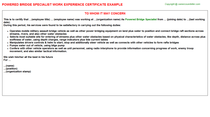 powered bridge specialist experience letter template