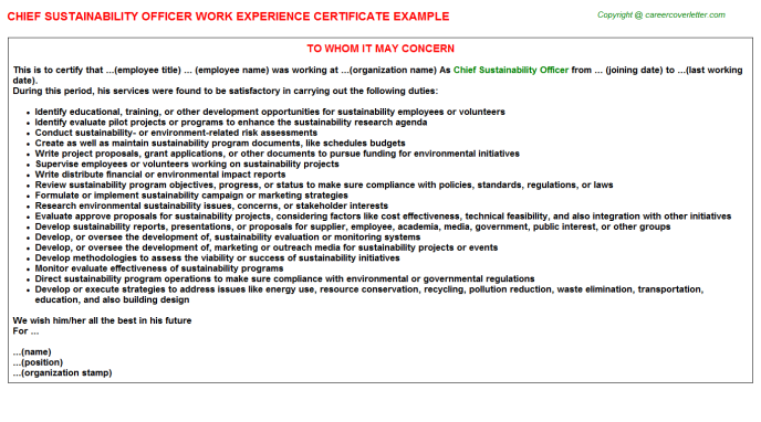 Chief Sustainability Officer Experience Letter Template