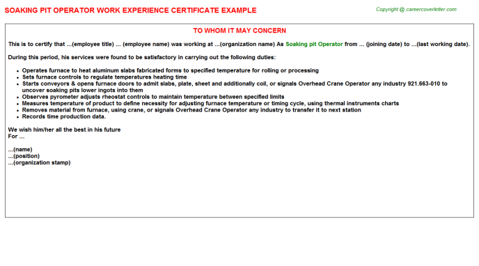 Soaking Pit Operator Job Experience Letter Template
