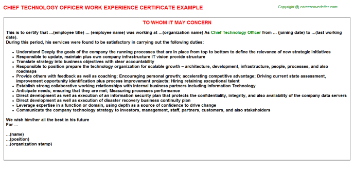 Chief Technology Officer Experience Letter Template