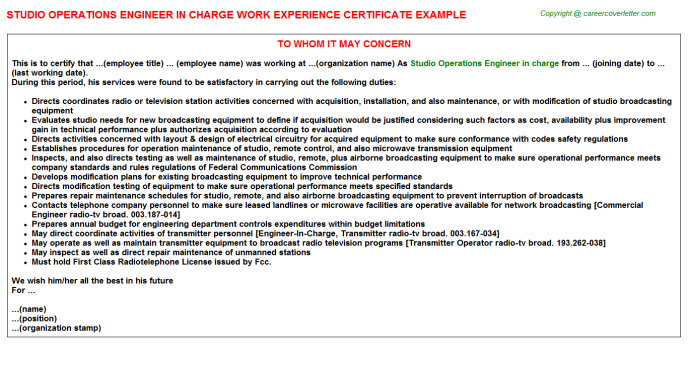 Studio Operations Engineer in charge Experience Letter Template