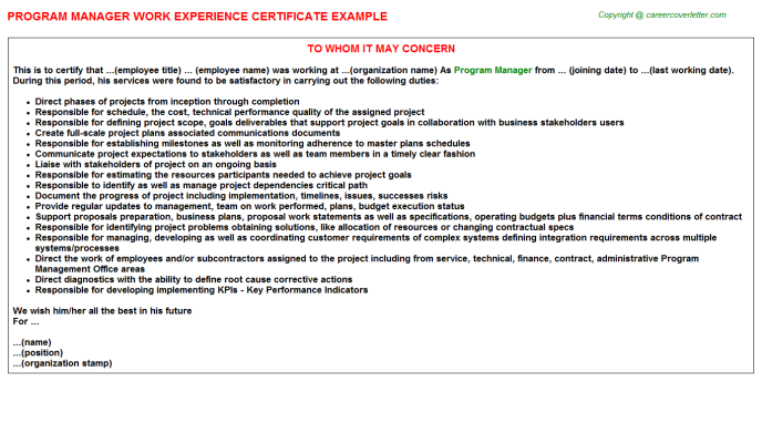 Program Manager Experience Letter Template