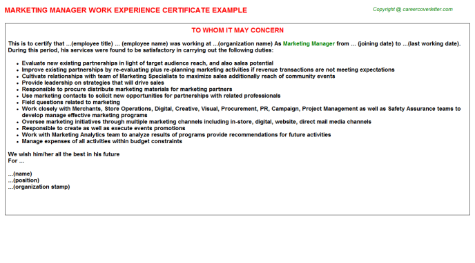 Marketing Manager Experience Letter Template