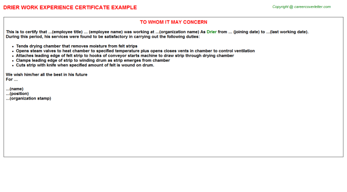 Drier Experience Letter Template
