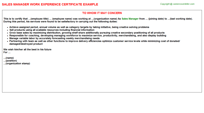 Sales Manager Experience Letter Template