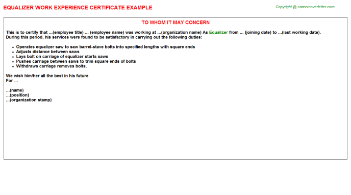 Equalizer Experience Letter Template