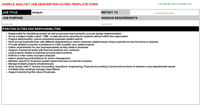 Analyst Job Description Template