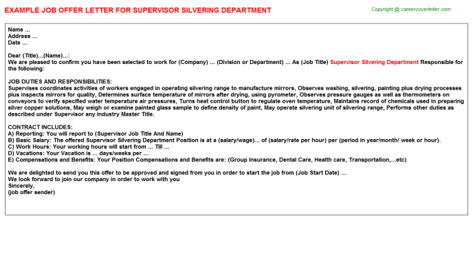 Supervisor Silvering Department Offer Letter Template