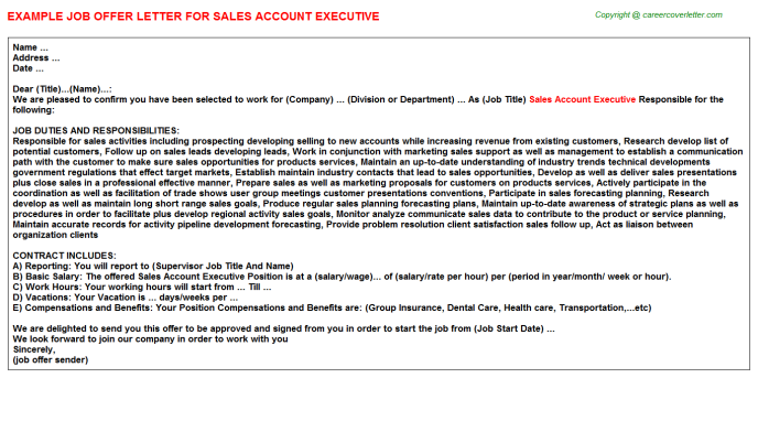 Sales Account Executive Job Offer Letter