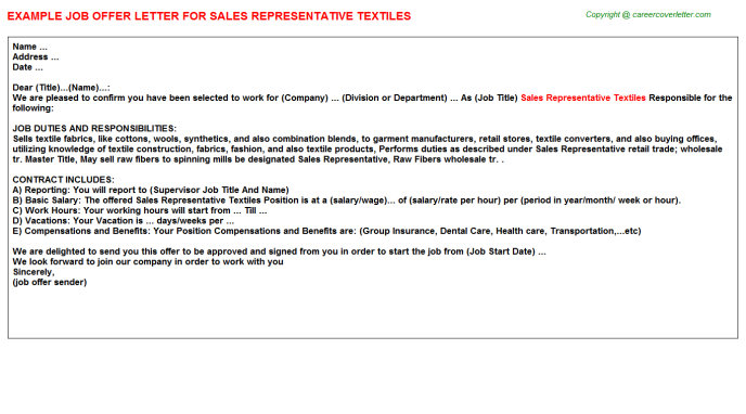 Sales Representative Textiles Offer Letter Template