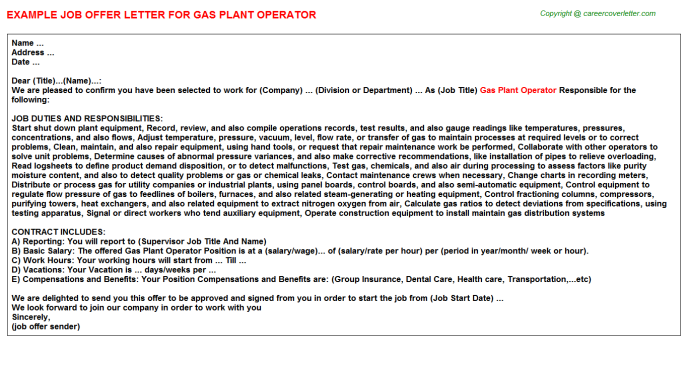 Gas Plant Operator Offer Letter Template