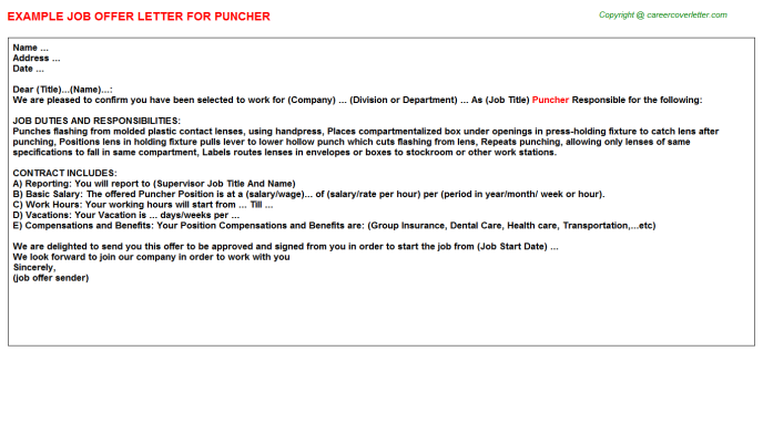 Puncher Job Offer Letter Template