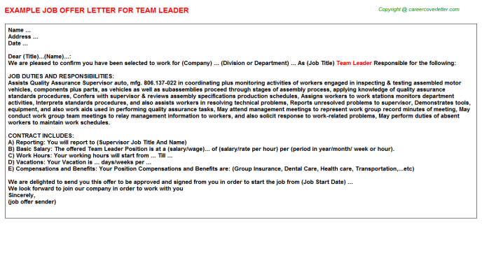 team leader offer letter template