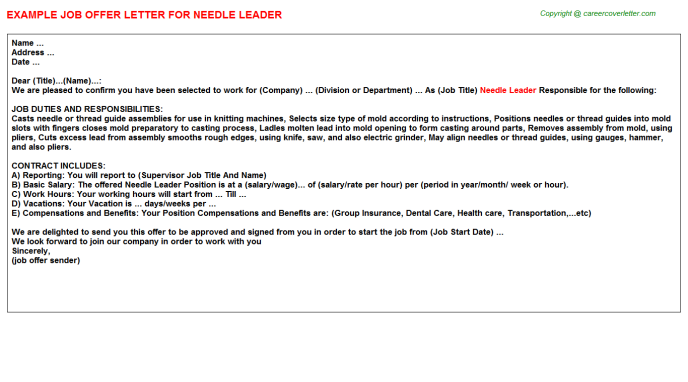 needle leader offer letter template