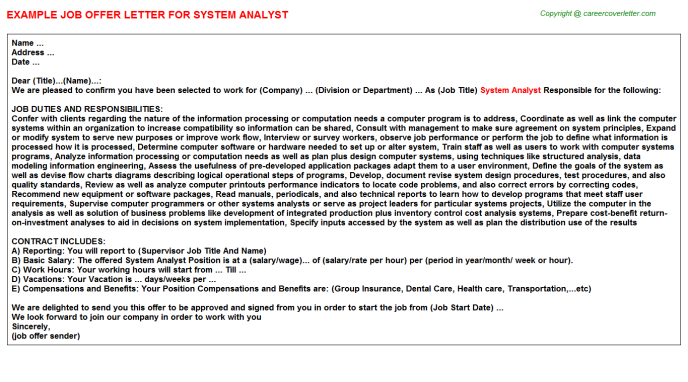 System Analyst Offer Letter Template