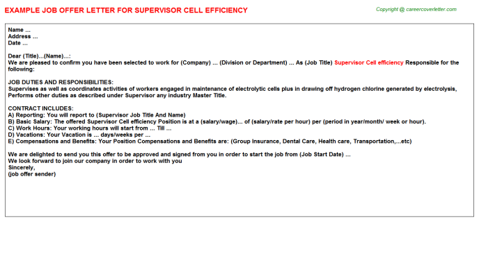 supervisor cell efficiency offer letter template