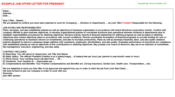 President Job Offer Letter Template