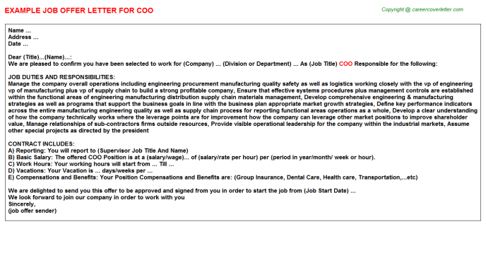COO Job Offer Letter Template