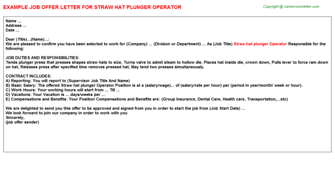 Straw hat plunger Operator Offer Letter Template