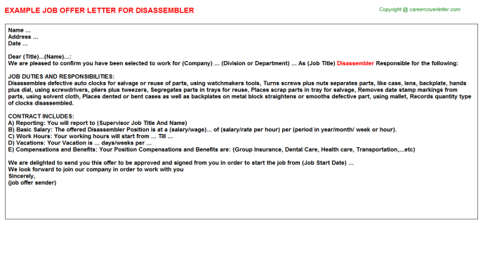 Disassembler Job Offer Letter Template