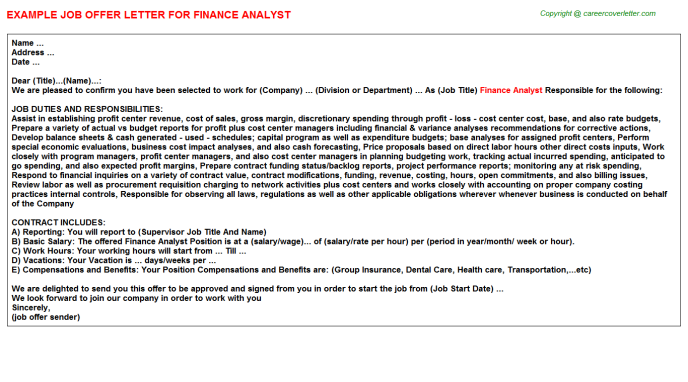 Finance Analyst Offer Letter Template